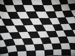 Checkered Flag Snuggle  Sack