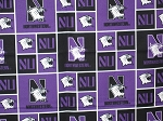 Northwestern Through the Collar Bandana