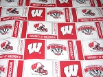 On Wisconsin Through the Collar Bandana