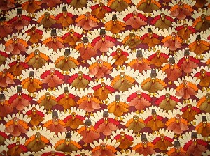 Turkeys Galore Through the Collar Bandana