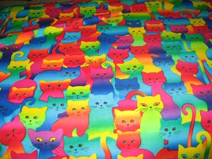 Rainbow of Cats Face Mask